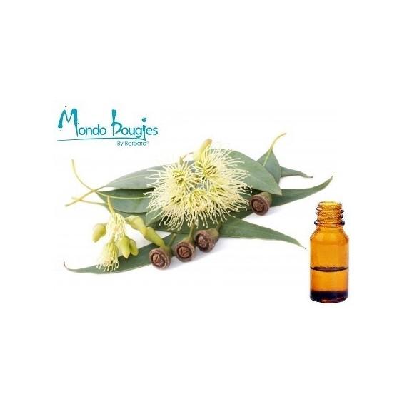 Huile Essentielle BIO Eucalyptus 15 ml