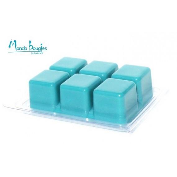 Moule / présentoir pour parfum solides