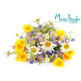 Parfum pour bougies Mille-fleurs