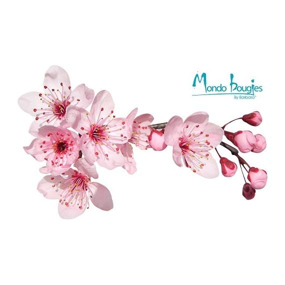 Parfum pour bougies Fleur de Cerisier